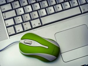 laptop with green mouse